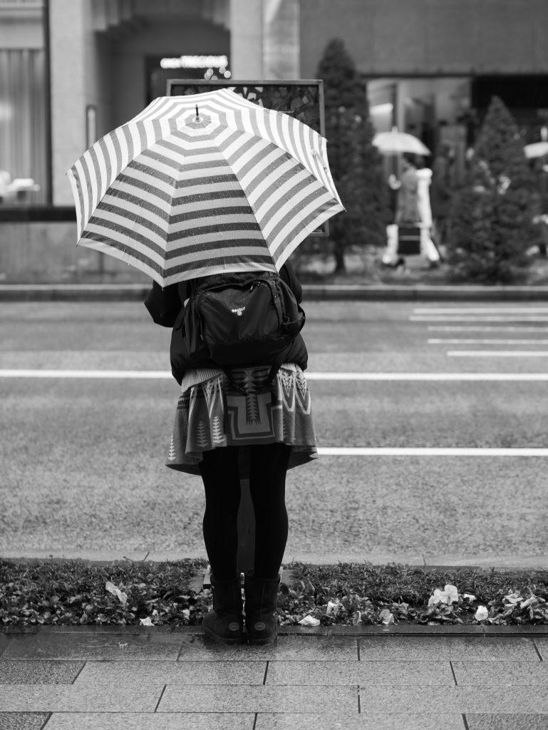 銀座 雨 傘 雨傘 女性 後姿