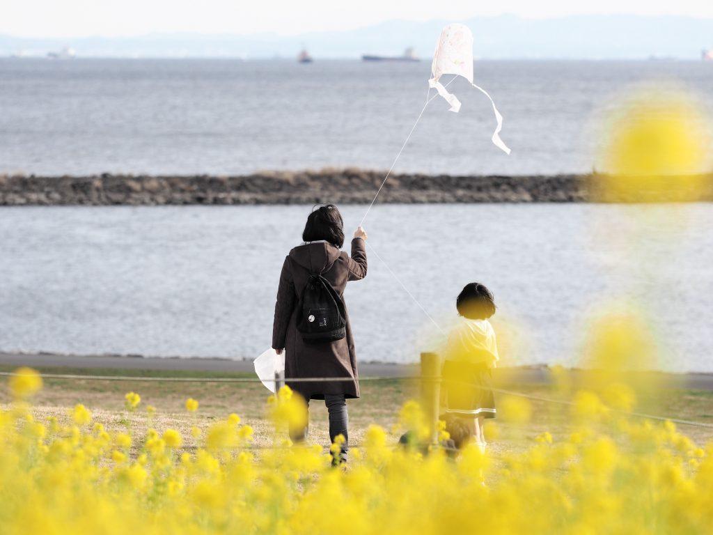 臨海公園 菜の花 凧揚げ 少女 母