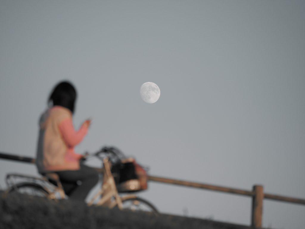 月 少女 自転車