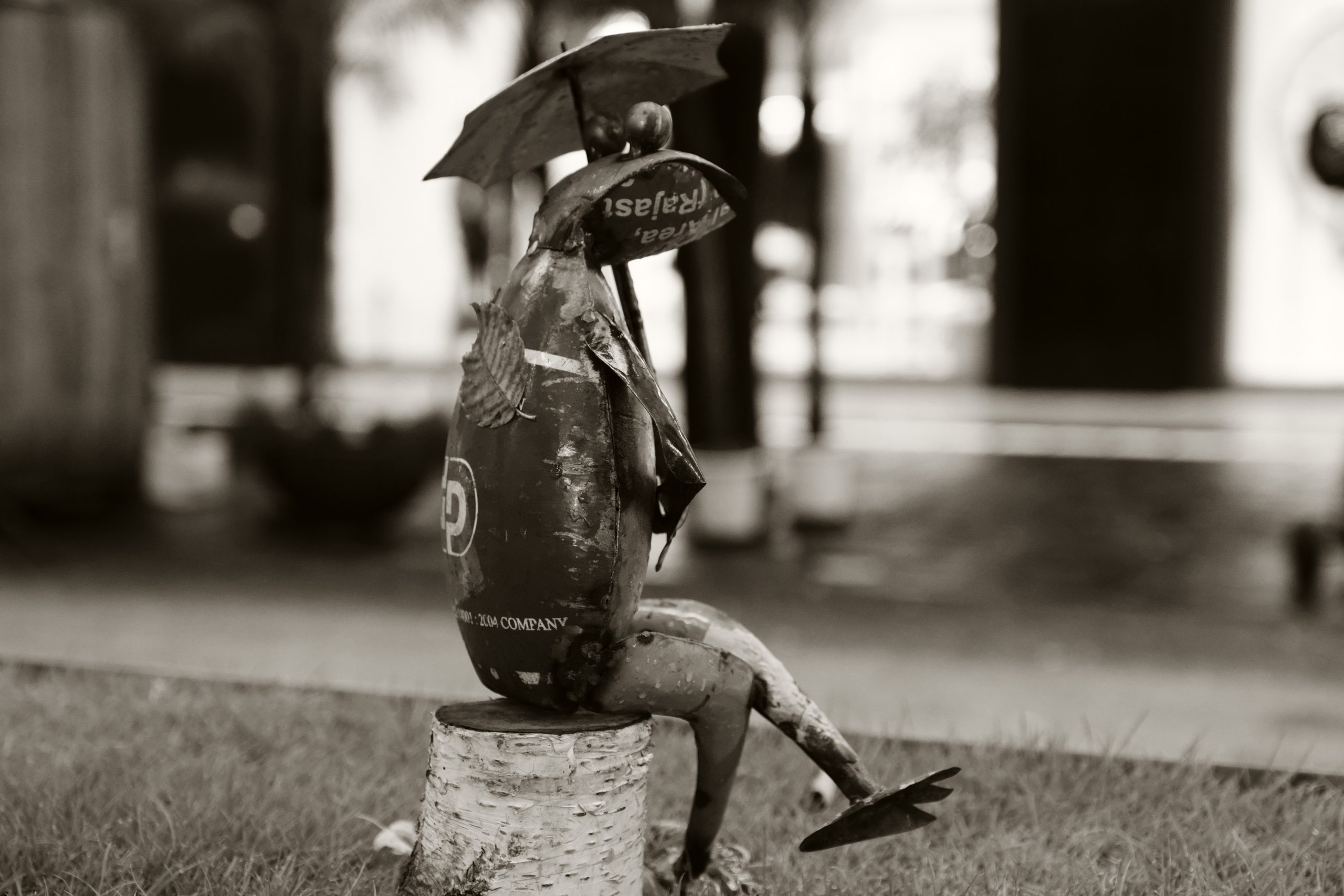 ブリキの雨蛙